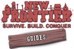 New Frontier: How to Build Your Own House