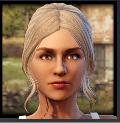 Freeman: Guerrilla Warfare - All companions( V1.0 )