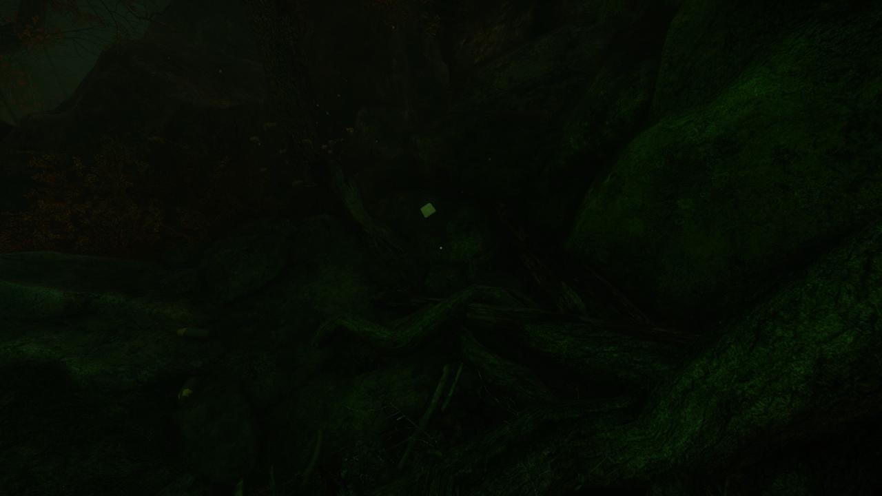 The Cursed Forest: Note Locations Guide